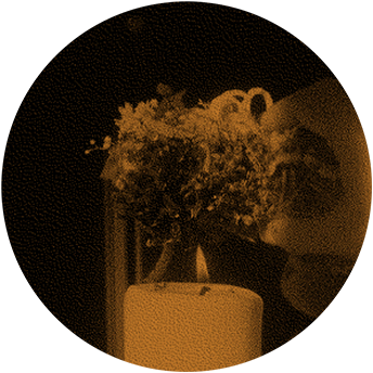 Valentine's Day Rituals Fig 01